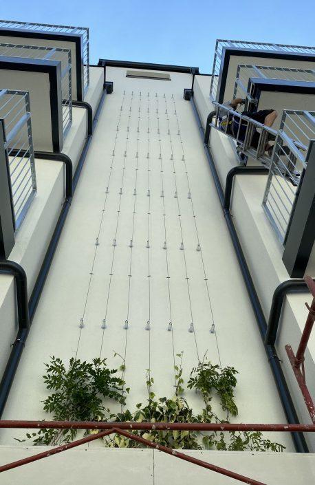 Rankhilfe für Pflanzen